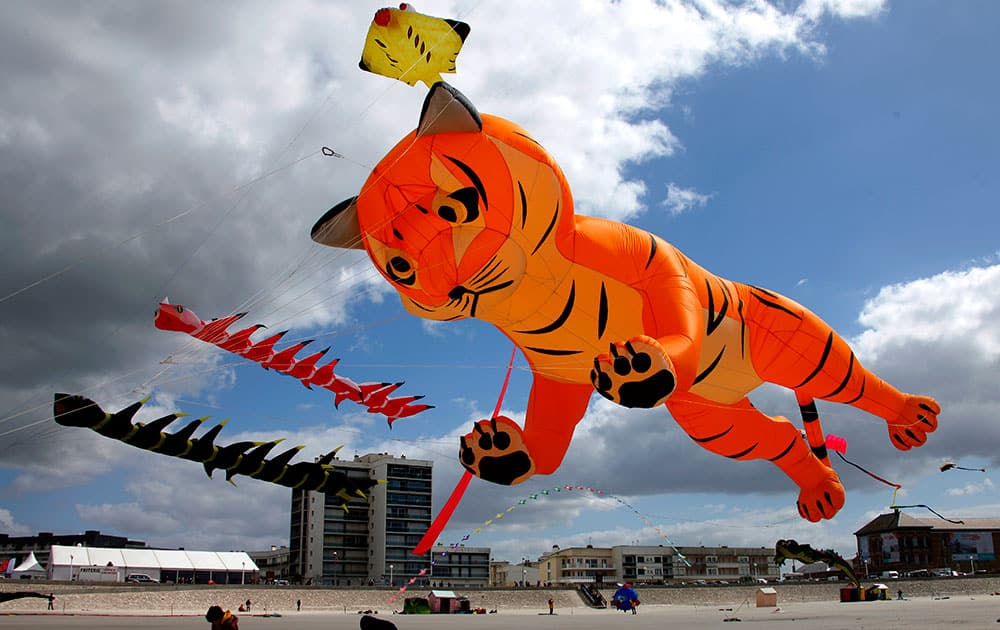 People on the sands fly their kits during the 28th International kite festival in Berck, northern France.