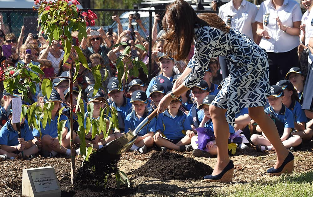 Britain`s Kate, the Duchess of Cambridge, shovels dirt as she helps plant a tree at a Girl Guide hall at Winmalee, Australia.
