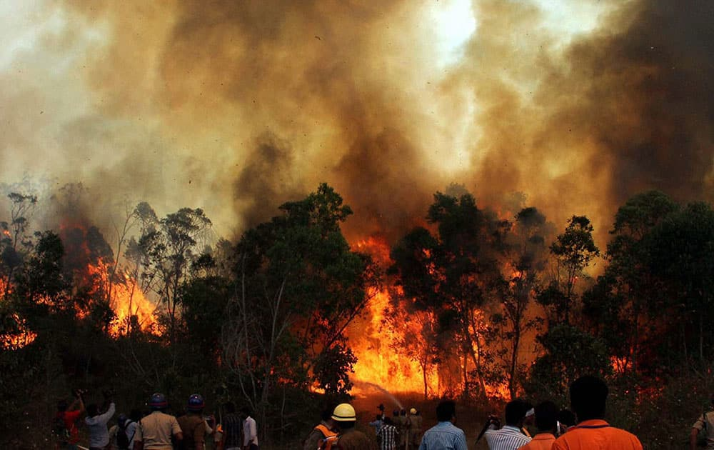 Fire personnel dousing the blazing fire at Tirumala forest in Tirupati on the second day.