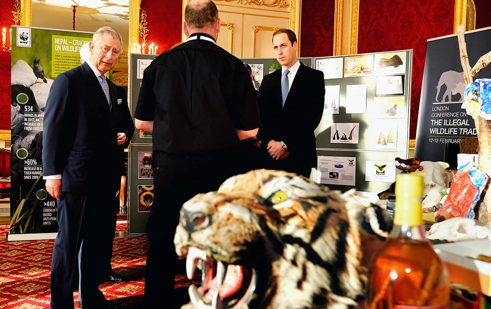 An official talks to Britain`s Prince Charles and Prince William during a tour of an exhibition about wildlife poaching, prior to the Illegal Wildlife Trade Conference held in London.