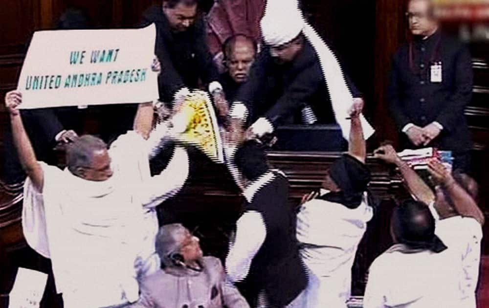 AP members protest for United Andhra Pradesh in the Rajya Sabha during the extended winter session in New Delhi.