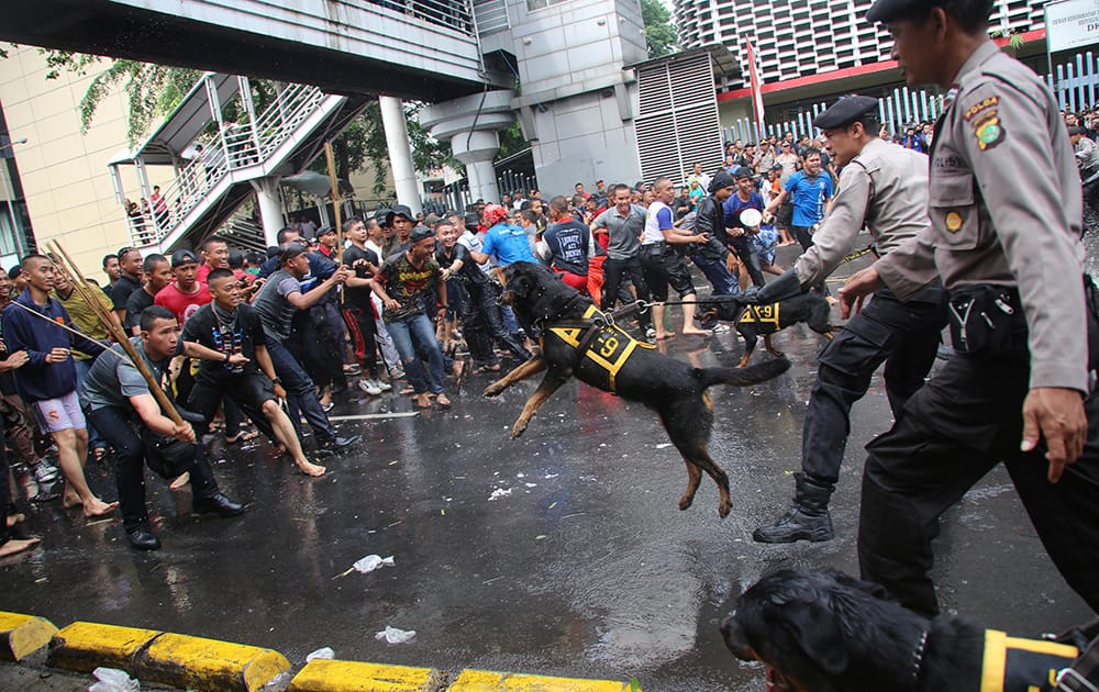 Indonesian Police officers from the K-9 Unit control mock protesters during a security drill for upcoming parliamentary elections in Jakarta.