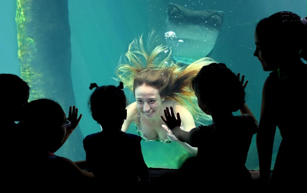 A model performs dressed as a mermaid at the Sao Paulo`s aquarium in Sao Paulo, Brazil.