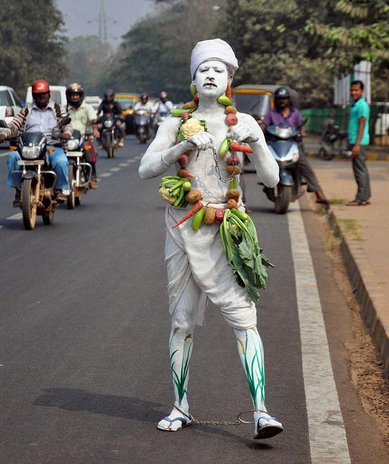 A volunteer with vegetable costume protests against police atrocity on farmers who were arrested while demonstrating in front of Odisha Chief Minister Naveen Patnaik`s car recently, in Bhubaneswar.