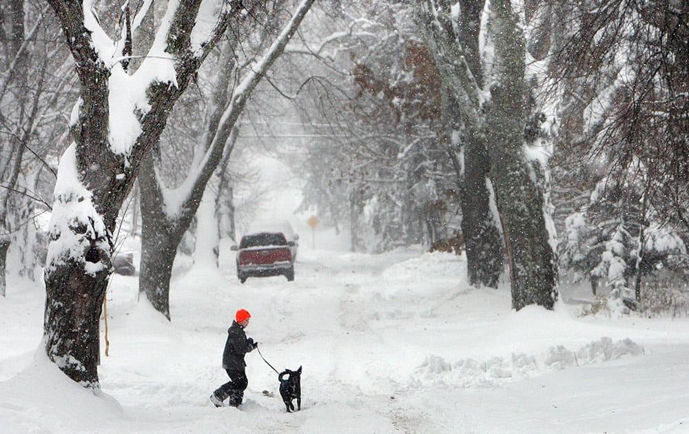 Zach Hansen, 12, of Duluth, walks his dog Charlie, a black lab-border collie mix, through a landscape steeped in snow.