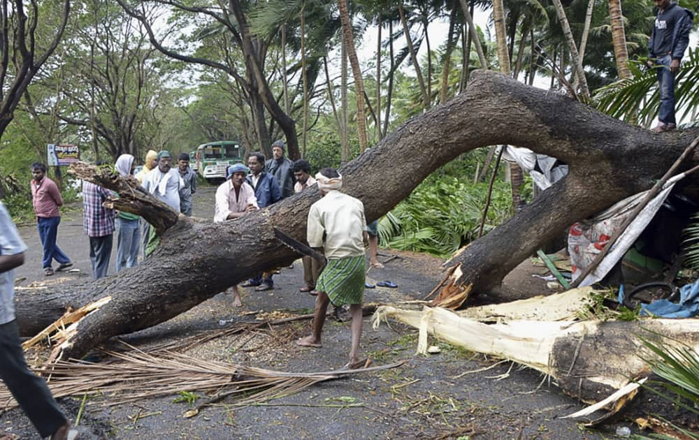 Men cut an uprooted tree from Cyclone Helen to clear a road in West Godavari district in Andhra Pradesh.