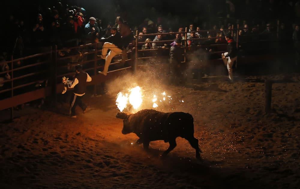 Revelers jump over the barricades as a fire bull chases them during the `Toro de Jubilo` Fire Bull Festival in Medinaceli, Spain.