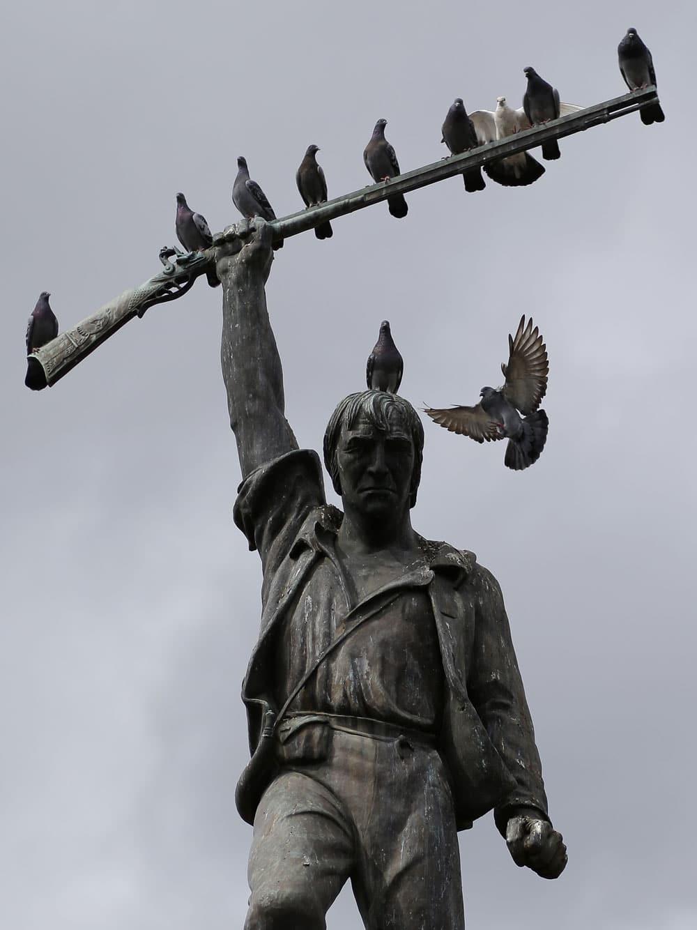 Pigeons roost under grey skies on the statue of Benjamin Rush Milam in Milam Park.