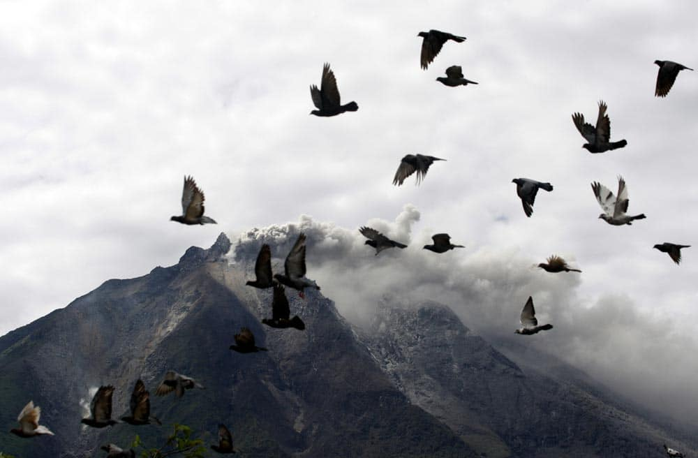 Pigeons fly by as Mount Sinabung spews volcanic materials following its eruption in Karo, North Sumatra, Indonesia.