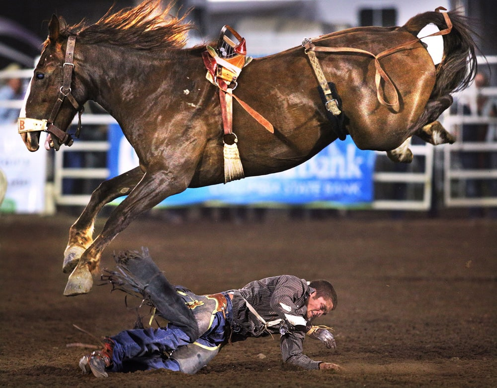 Cowboy Morgan Wilde is thrown to the arena dirt for a no-time in the bareback riding finals of the Walla Walla Fair and Frontier Days PRCA Rodeo in Walla Walla, Wash.