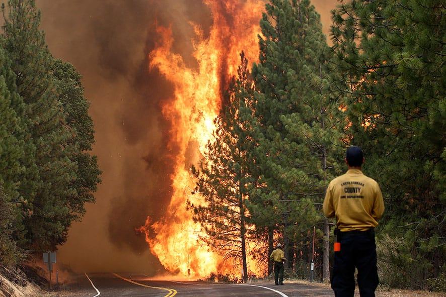 The Rim Fire burns along Highway 120 near Yosemite National Park, Calif.