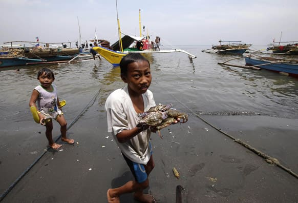 A boy shows the catch of crabs amidst the oil spill that reached the shores of Rosario township, Cavite province south of Manila, Philippines.