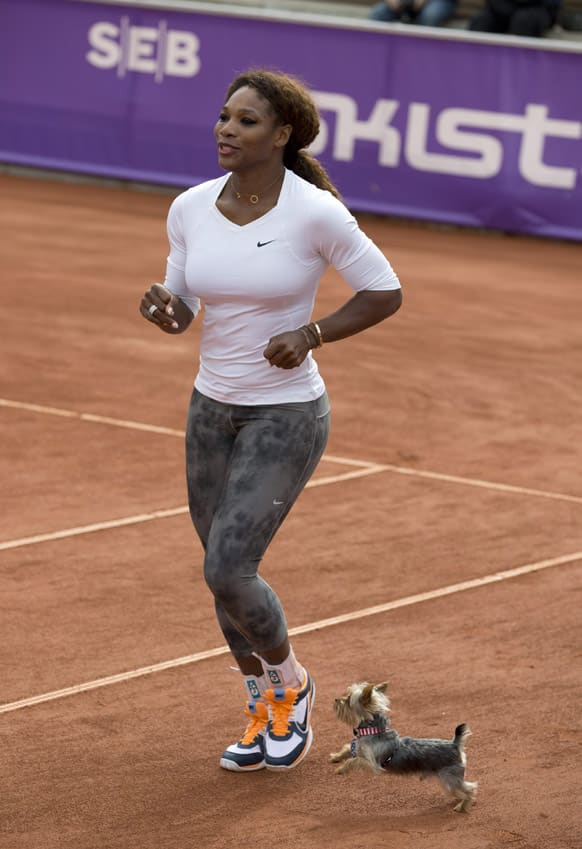 US tennis player Serena Williams warms up with her Yorkshire terrier Chip during a training session, prior to her participation in the Swedish Open Tennis tournament, in Bastad.