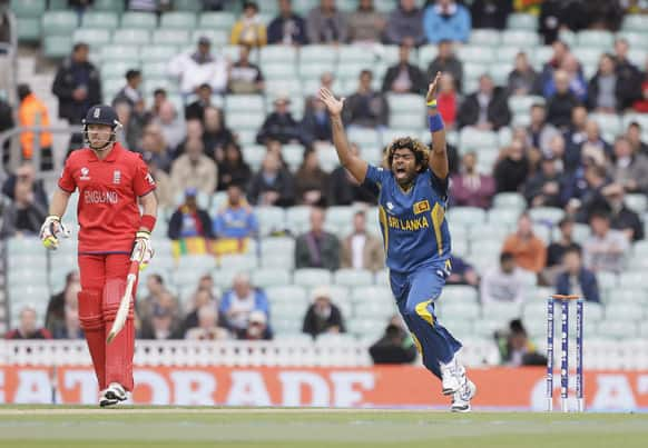 Sri Lanka`s Lasith Malinga appeals for lbw for England`s Alastair Cook which was turned down during their ICC Champions Trophy cricket match at the Oval cricket ground in London.