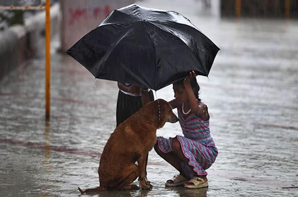 A girl uses her umbrella to protect a stray dog during monsoon rains in Mumbai.