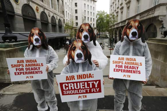 Supporters of PETA, People for the Ethical Treatment of Animals, protest outside the Indian High Commission in London against Air India lifting its ban on transporting animals to laboratories.