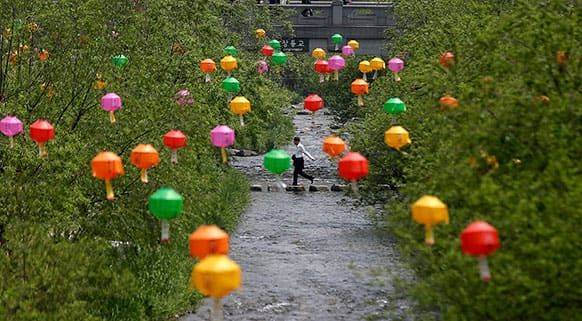 A man crosses a stream under the lanterns hanging for the upcoming Buddha`s birthday on May 17, in Seoul, South Korea.