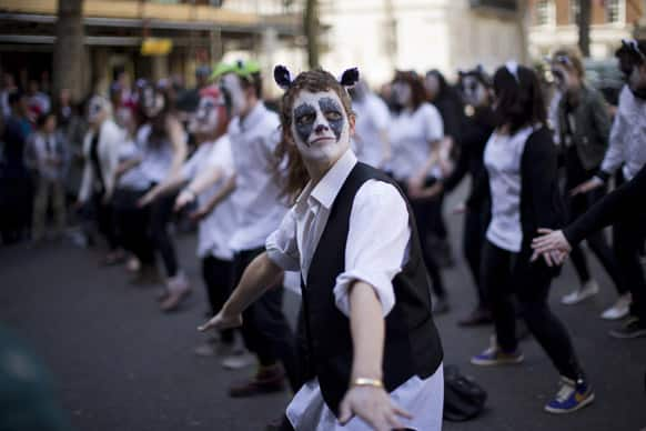 Activists with their faces painted like badgers dance to Brian May`s
