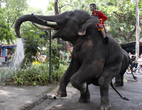 Assisted by its mahout, an elephant blows water from its trunk ahead of the Songkran festival, Thai New Year celebration, at Dusit Zoo in Bangkok.