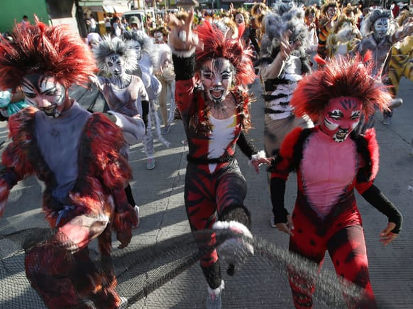Filipino students dressed in cat costumes perform as they walk along a streets during the annual
