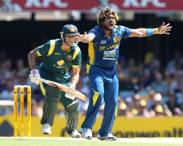 Sri Lanka`s Lasith Malinga appeals the wicket of Australia`s Mitchell Starc during their One Day International cricket match in Brisbane.
