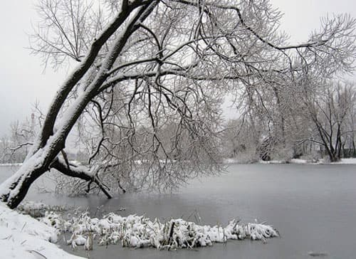 Fill soft and deep, O winter snow! Hide the banks where roses grew