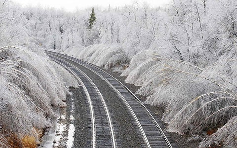 Tracks wait for locomotives to chug through a fairyland