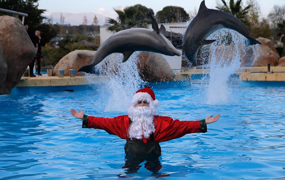 A man dressed as Santa Claus poses for photographers with two dolphins, at the Marineland animal exhibition park in Antibes, southeastern France.