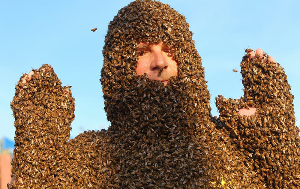 Ken VandenDool shows off his bee beard at an annual competition at Clovermead Adventure Farm in Aylmer, Ontario, Canada.
