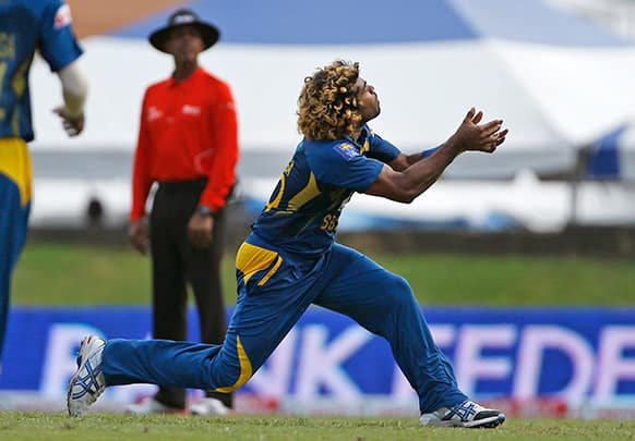 Sri Lanka's Lasith Malinga takes the catch to dismiss West Indies' Darren Sammy for 3 runs during their Tri-Nation Series cricket match in Port-of-Spain, Trinidad.