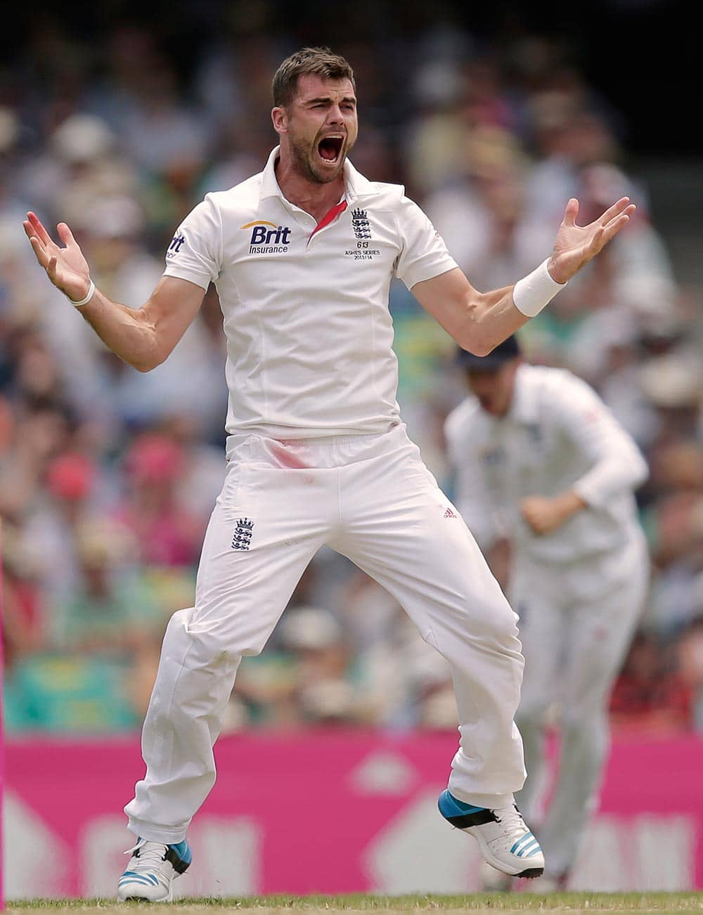 England's James Anderson celebrates being given a LBW decision on Australia's Shane Watson for 43 runs in their Ashes cricket test match at the Sydney Cricket Ground in Sydney.