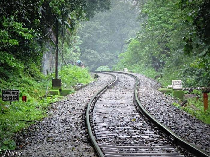 On the way back. Heading to Kulem Station after the 10km jungle trek. Image by Chandni Nihalani Kumar
