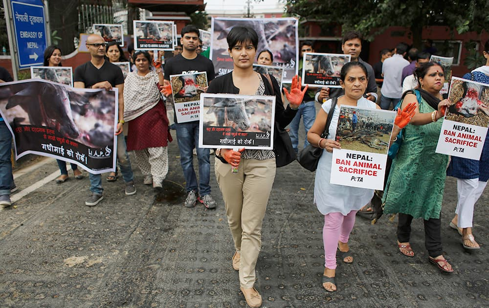 Animal rights activists hold placards demanding a ban on the massive animal sacrifice that takes place during an upcoming festival at Nepal's Gadhimai Hindu temple as they protest outside the Nepalese embassy in New Delhi.