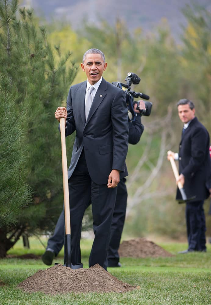 US President Barack Obama, left, and Mexican President Enrique Pena Nieto, right, join other world leaders during a tree planting ceremony at Friendship Lawn, Yanqi Lake for the Asia-Pacific Economic Cooperation (APEC) Summit,  in Beijing.