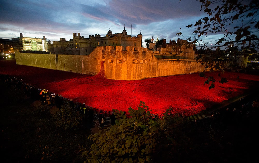The near completed ceramic poppy art installation by artist Paul Cummins entitled 'Blood Swept Lands and Seas of Red' is seen lit up before sunrise in the dry moat of the Tower of London in London.