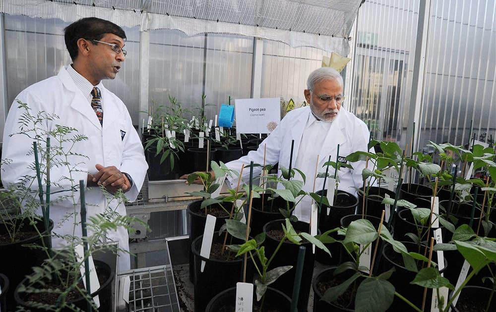 Prime Minister Narendra Modi during a visit to Queensland University of Technology in Brisbane, Australia.