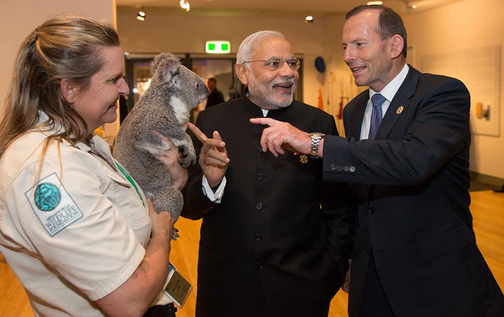 Australian Prime Minister Tony Abbott and Prime Minister of India Narendra Modi gesture as they are introduced to a koala held by Michele Barnes during a photo opportunity on the sidelines of the G-20 summit in Brisbane, Australia.