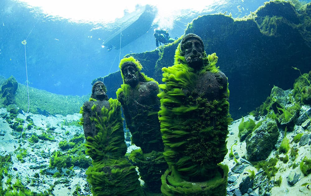 the Eye Spy statues, overgrown with algae after going years without any cleaning, are seen under the water at Silver Springs State Park in Ocala, Fla.
