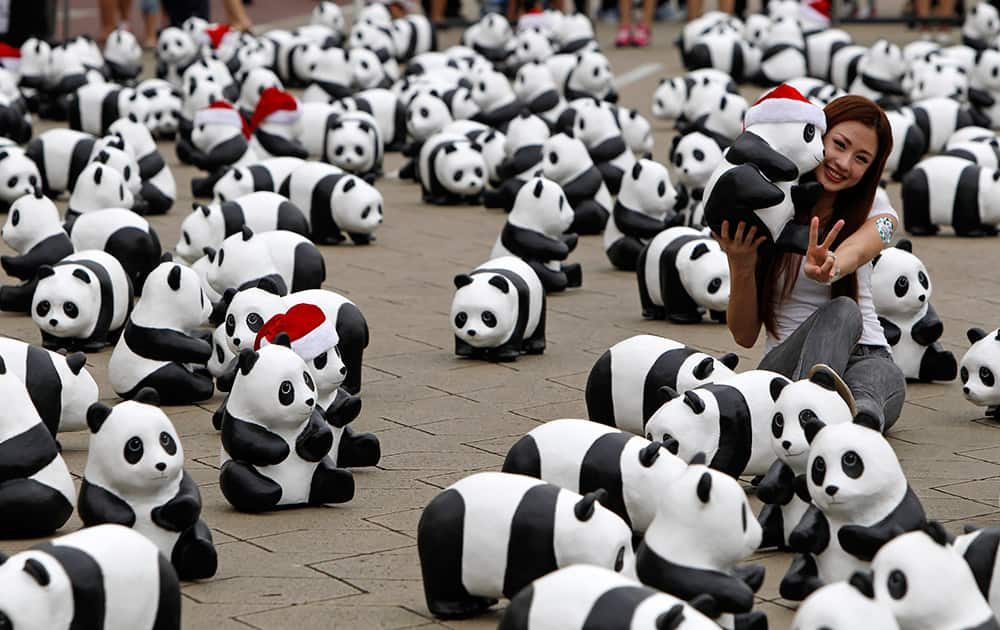 A woman poses for photographers with the part of the 1,600 paper pandas, created by French artist Paulo Grangeon, in front of the Sultan Abdul Samad Building during the month-long