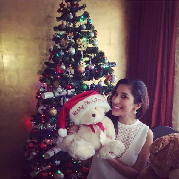 SOPHIE CHOUDRY ‏:- #MERRYCHRISTMAS EVERYONE! PEACE, HEALTH, HAPPINESS TO U ALL WISH IT WAS MORE WINTERY IN MUMBAI BUT STILL LOVE #XMAS - TWITTER