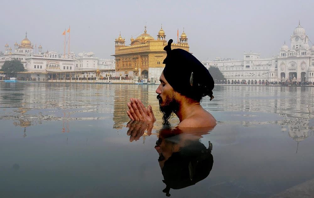 A Sikh devotee takes dip in the holy sarovar at the Sikh Shrine on the occasion of birth anniversary of Guru Gobind Singh, in Golden Temple.