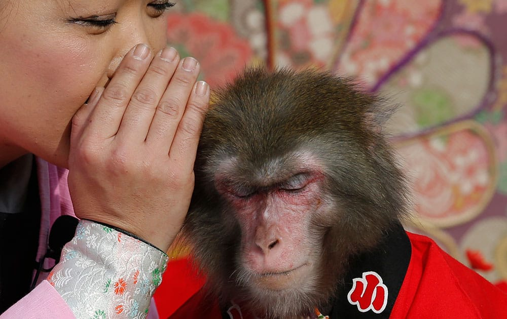 Ponta the monkey gestures to listen to a monkey trainer during their performance in Tokyo.