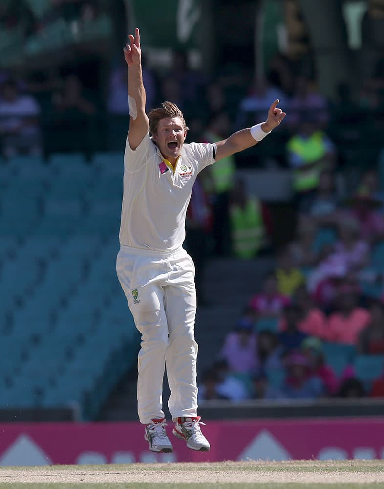 Australia's Shane Watson jumps up after taking the wicket of India's Suresh Raina, caught behind for no score, on the third day of their cricket test match in Sydney.