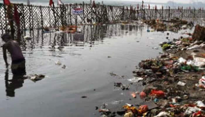 NGT bans vegetables' farming along Yamuna river bed