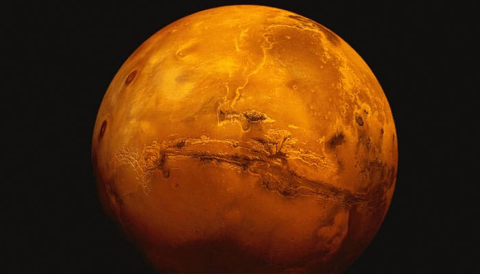 Researchers to send seeds to Mars