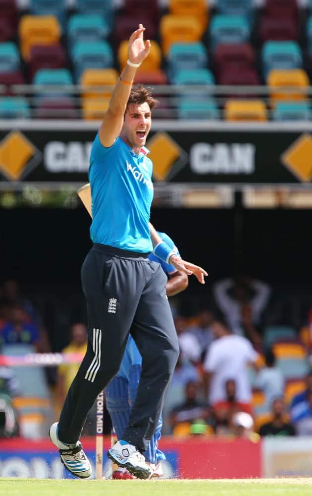 England's Steven Finn celebrates taking the wicket of India's Ambati Rayudu for 23 runs during their one day International cricket match in Brisbane, Australia.