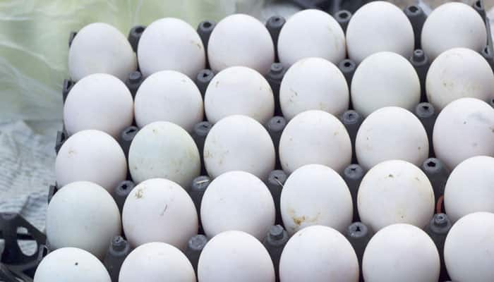 Scientists find how to unboil eggs