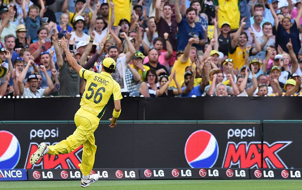 Australia's Mitchell Starc runs past the crowd with his finger up high after catching out England's Ian Bell during their Cricket World Cup pool A match in Melbourne, Australia.