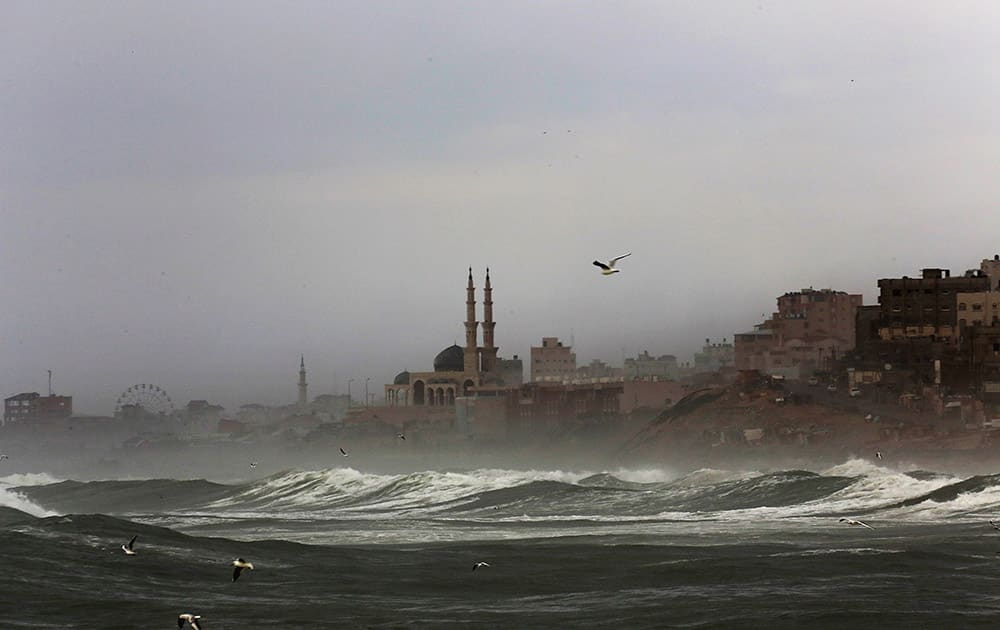 Seagulls fly as waves of the Mediterranean Sea hit the beach during rainy weather in Gaza City, in the northern Gaza Strip