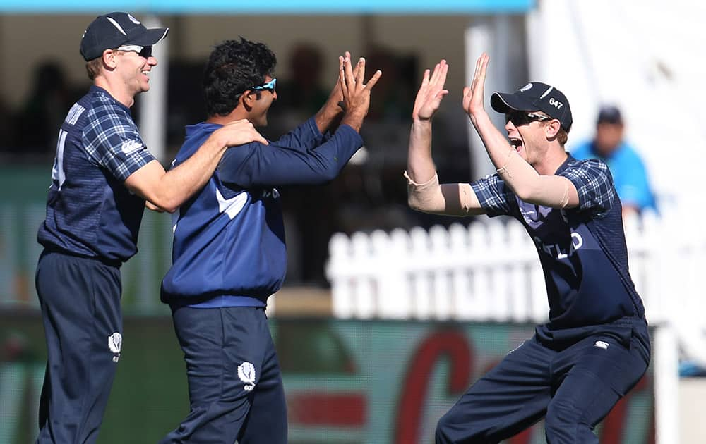 Scotland's Majid Haq, is congratulated by teammate's Richie Berrington and Ali Evans after taking catch to dismiss Afghanistan's Gulbadin Naib during their Cricket World Cup Pool A match in Dunedin, New Zealand.
